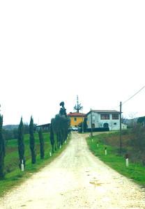 Canniccio Ingresso